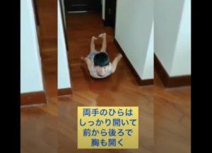 純土くんSuiSuiボード